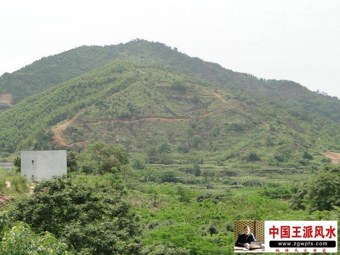 潮州催官风水宝地 卧牛穴图片